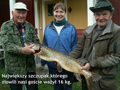 Szczupak złowiony w Szwecji