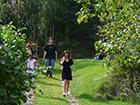 Ogródek i las