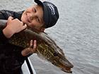 Ryba Szczupak