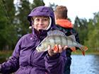 Ryba Okoń złowiona nad jeziorem