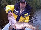 Ryba sandacz złowiona w jeziorze