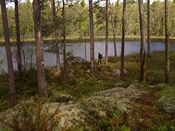 Park narodowy Norra Kvills
