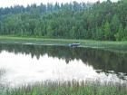 Jezioro i las